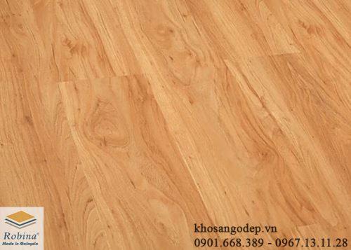 Sàn gỗ Robina CA11 tại Nam Định