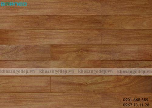 Sàn gỗ Borneo BN19