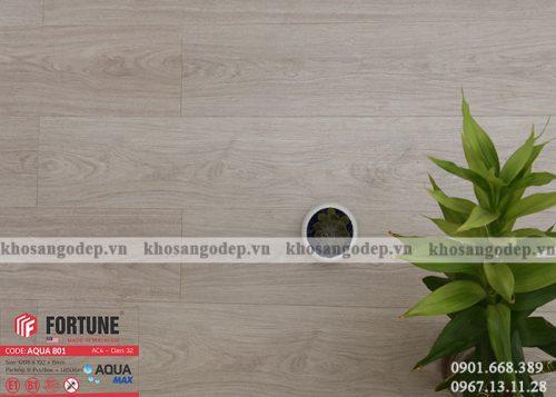 Sàn gỗ Fortune 8mm Aqua 801