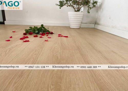 thi công sàn gỗ pago Premium M8113 tại Hà Đông